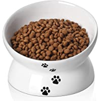 Y YHY Ceramic Raised Cat Food Bowl, Slanted Cat Dish, Tilt Angle Protect Cat's Spine, Stress Free, Backflow Prevention, Cat, White