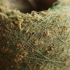 Nyalex Natural Moss Ball BONSAI Green Sphagnum Moss Substrate Moss Bonsai Decorative Flowers & Wreaths For Garden House Balcony 4