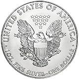 2015年製造 アメリカンイーグル銀貨1オンス(41mmクリアーケース付き)