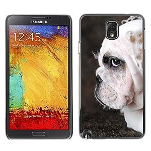 YiPhone /// Prima de resorte delgada de la cubierta del caso de Shell Armor - English Bulldog British Wrinkled Dog - Samsung Galaxy Note 3 N9000 N9002 N9005