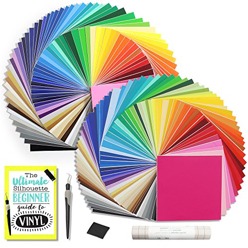 Kit - 129 Assorted Colors! 651 Glossy and 631 Matte, Silhouette CAMEO Vinyl Guide, Transfer Paper and Tools (Matte Glossy Paper)