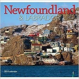 ??VERIFIED?? 2014 Newfoundland & Labrador Wall. record Streeter jonrones motor provide COMPRA madera