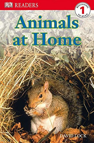 DK Readers L1: Animals at Home (DK Readers Level 1)