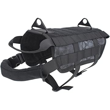 reliable Outry MOLLE