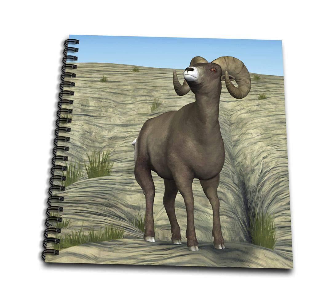3dRosa Zeichenbuch, variiert, 8 x 8 cm B00B9QZOKA      | Elegante und robuste Verpackung  e364b9