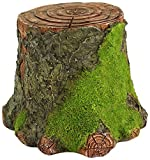Top Collection Miniature Fairy Garden and Terrarium Decorative Mossy Tree Stump Display Riser Review