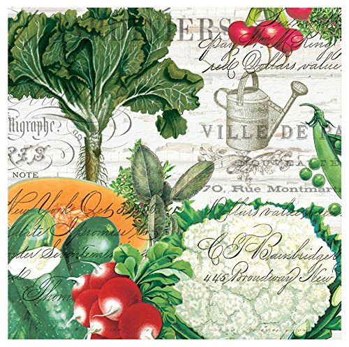 (Michel Design Works From My Garden 20 Count Paper Cocktail Napkins)