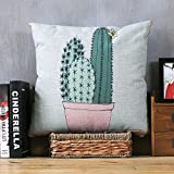 HOMEE Fresh Pillow Quilt Two Simple with Blankets from the Office of the Lunch Break for Lunch is the Portable Air-Conditioning Fold Cushion is ,40X40, Woven Bag,Toner basin cactus,40X40