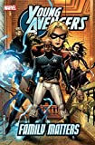 Young Avengers Vol. 2 - Family Matters: Family Matters v. 2