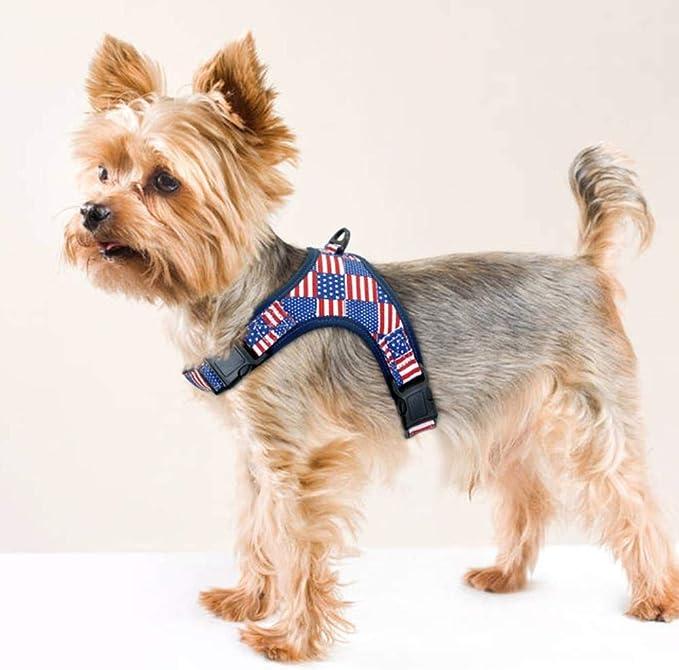 KXTHUT-Collar para mascotas Collar De Perro Ajustable Arnés De ...