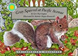 Gray Squirrel at Pacific Avenue - a Smithsonian's Backyard Book (with audiobook cassette tape) (Smithsonian's Backyard/Boxed Book and Cassette)