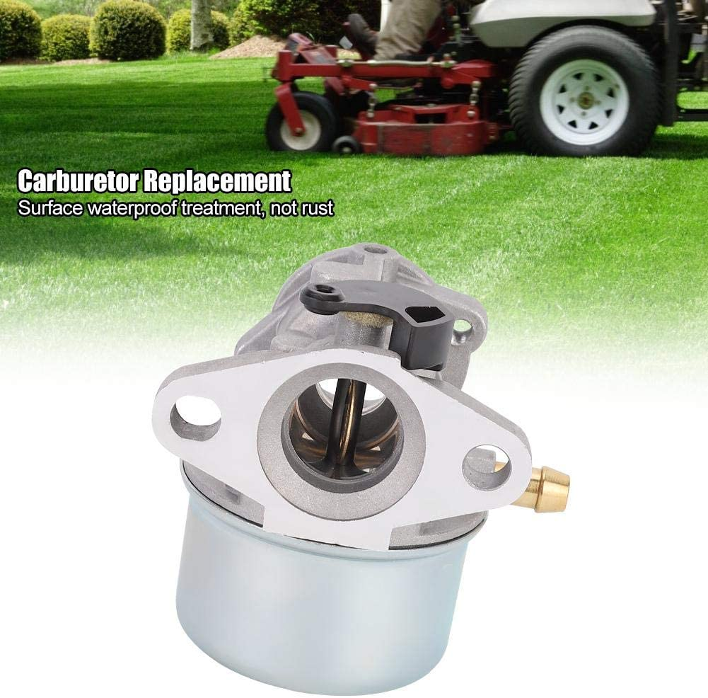 Equipped with Gasket Carburetor Replacement Accessory Fit for Briggs /& Stratton 14111 799868 498254 497347 Carburetor