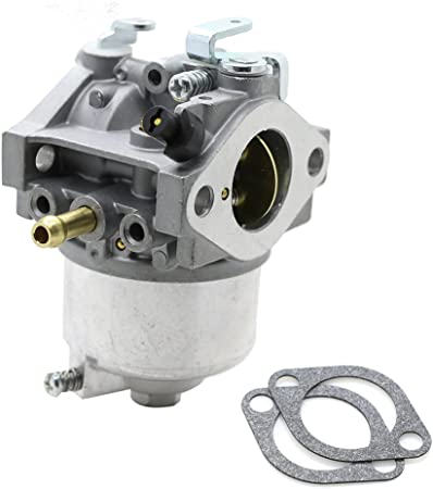 Amazon.com: am123578 carburador Carb con Kits de junta de ...