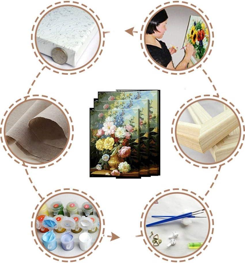 nadamuSun Pittura Fai-da-Te per Kit di Numeri Tema Pittura Digitale Kit per Tela PBN Compleanno Matrimonio Nuovi alloggi Regali di Natale N1, con Telaio
