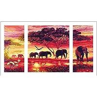 AWAkingdemi Elephant 5D DIY Full Drill Diamond Painting 3-Pictures Combination Kits
