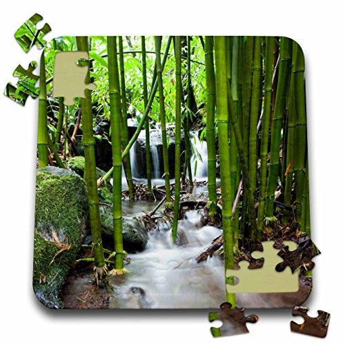 Danita Delimont - Flora - Flora, Bamboo forest waterfall, Haleakala NP, Maui - US10 JGS0016 - Jim Goldstein - 10x10 Inch Puzzle - Pipiwai Trail