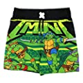 TMNT Teenage Mutant Ninja Turtles Boys Swim Trunks Swimwear (Baby/Toddler/Little Kid)