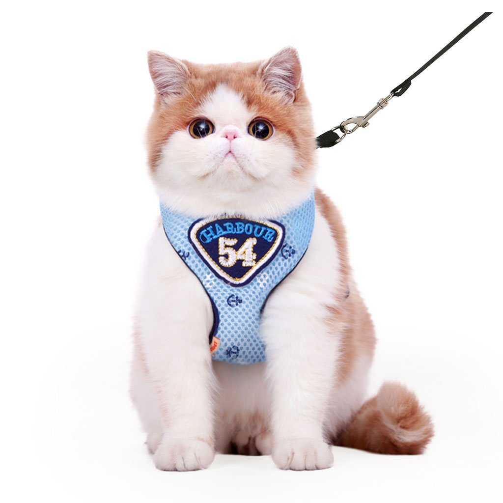 TLMY Grid Chest Strap Cat Leash Rope Pet Chest Strap Leash Pet Chain (color   bluee, Size   M chest 24-50Cm)