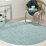 Safavieh Montauk Collection MTK602E Handmade Flatweave Turquoise and Multi Cotton Round Area Rug (6' Diameter)