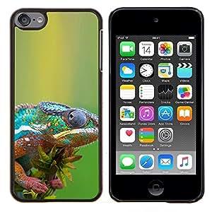 TECHCASE---Cubierta de la caja de protección para la piel dura ** Apple iPod Touch 6 6th Touch6 ** --The Cool Camaleón
