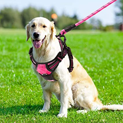 Reflective Dog Soft Harness No Pull Nylon Adjustable Strong Vest Walking Harness Dog Supplies