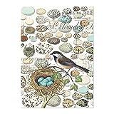 Michel Design Works Cotton Kitchen Dish Towel, Nest
