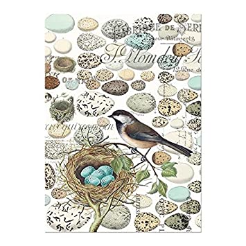Michel Design Works Cotton Kitchen Dish Towel, Nest U0026 Eggs