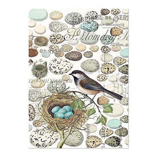 Michel Design Works Cotton Kitchen Dish Towel, Nest & Eggs