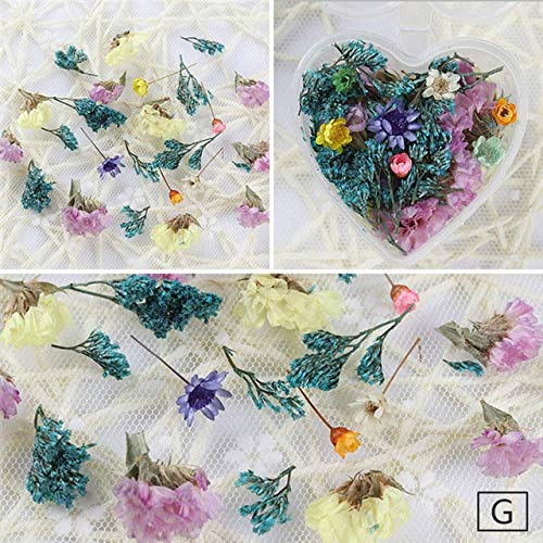 Nails Art Accessories - 1 Box Dried Flowers
