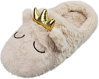 Lady Winter Warm Novelty Crown Slippers Shoes Womens Autumn Soft Cozy House Slippers Booties Girls Fluffy Cute Clogs Mules Slipper with Plush Fleece Lined Home Bedroom Spa Hotel Indoor Footwear Shoes