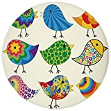 Round Rug Mat Carpet,Birds,Abstract Patterned Funky Birds Colorful Designs Flowers Dots Lines Circles Animal Fun Decorative,Multicolor,Flannel Microfiber Non-slip Soft Absorbent,for Kitchen Floor Bath