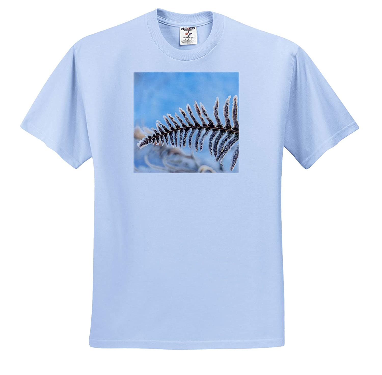 ts/_315192 Winter - Adult T-Shirt XL January Snow and Frost on Fern 3dRose Danita Delimont
