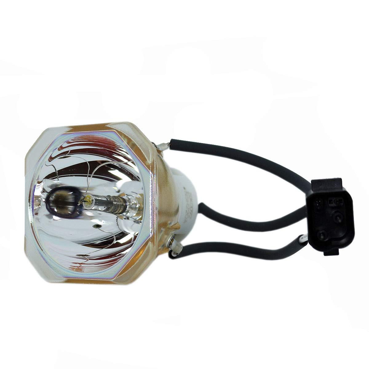 SpArc 交換用プロジェクターランプ 囲い/電球付き NEC LT260用 Platinum (Brighter/Durable) Platinum (Brighter/Durable) Lamp Only B07MPTCLWN