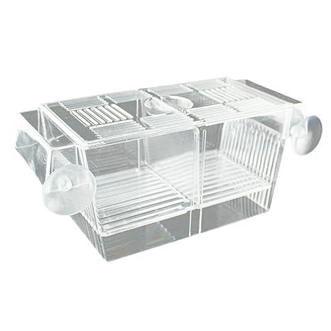 SGerste Caja de cría para pecera de acuario, diseño flotante