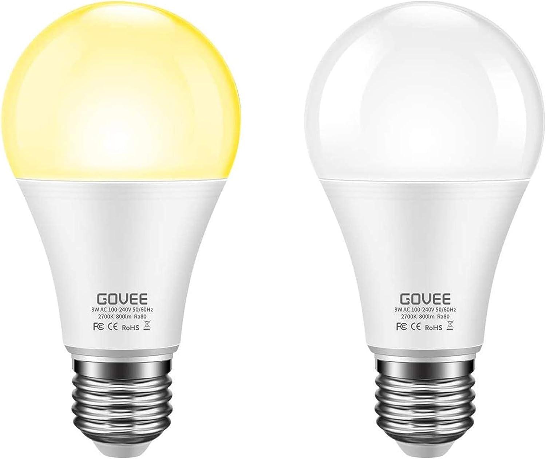 Govee dusk to Dawn light bulb