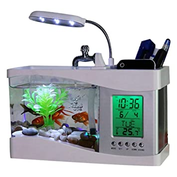Chengstore Acuaponic Tanque de Peces, Mini pecera pequeña USB para Acuario de Escritorio, Vista ecológica de pecera con Reloj LED, Blanco, 24x 10x 19CM: ...