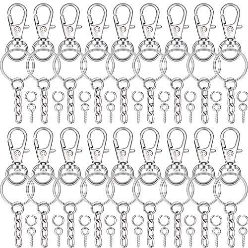 Clasp Including (Hestya 200 Pieces Metal Key Chains Set Including 50 Pieces Lobster Claw Clasps, 50 Pieces Key Chain Rings Chain, 50 Pieces Open Jump Rings 50 Pieces Screw Eye Pins)