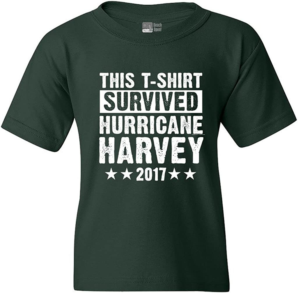 This T-Shirt Survived Hurricane Harvey Houston Texas 2017 DT Youth Kids T-Shirt Tee