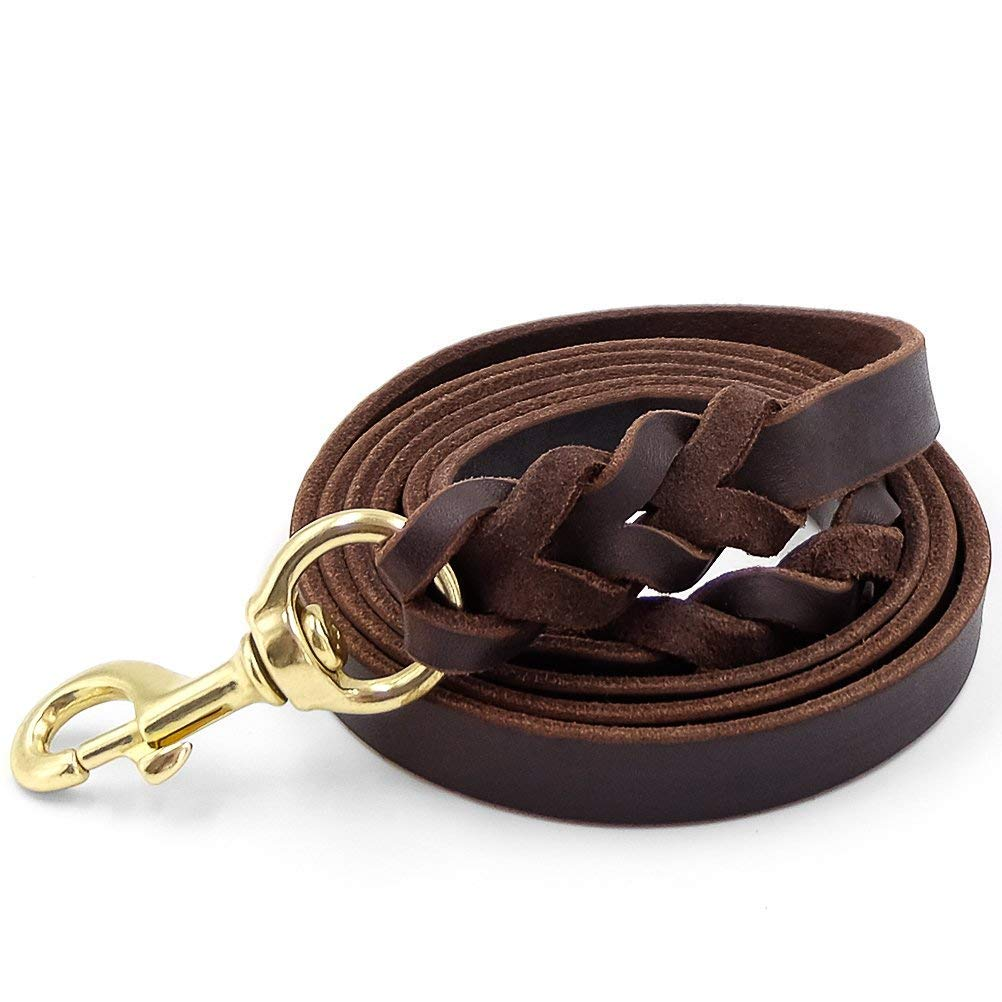 Fairwin Leather Dog Leash 6 Foot - Braided Heavy Duty Training Leash for Large Medium Small Dogs Running and Walking (M:Width:5/8'', Brown) by Fairwin