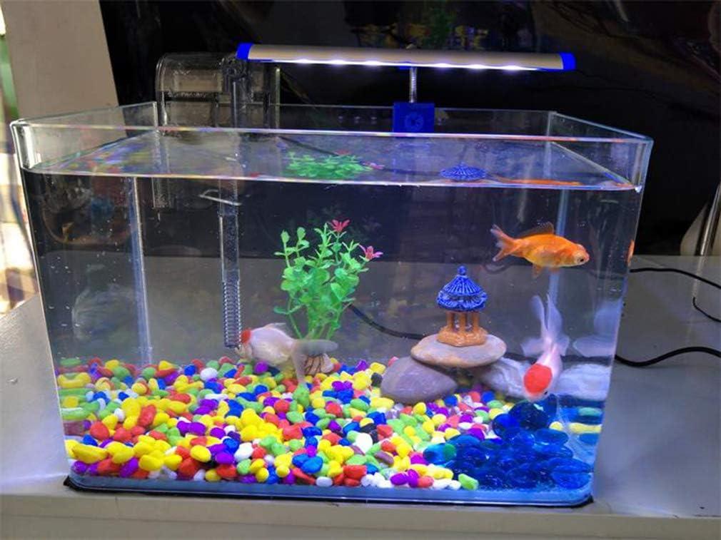 Smilewx Square Glass Fish Tank Rectangular Small Fish Tank Aquarium Fish Tank Ultra White Glass Fish Tank Home Decoration Home Living Room Vase Tank Amazon Co Uk Kitchen Home