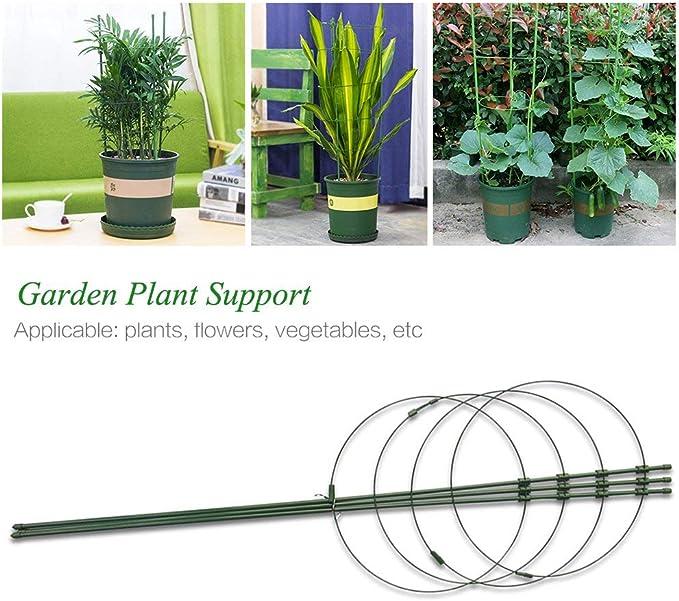 Yunhigh Soporte de Planta de Jardín, Anillos de Soporte de Planta ...
