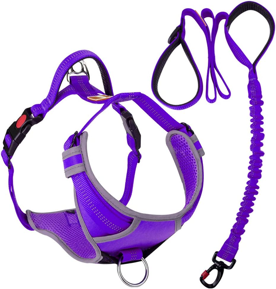 AdventureMore No-Pull Dog Harness Leash Set, No-Choke Adjustable Reflective Safety Breathable Sport Vest with 5 ft Double Handle Dog Leash