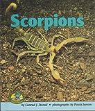 Scorpions, Conrad J. Storad, 082253004X