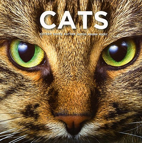 Cat Coffee Table Book: This Book Celebrates the Beauty and Diversity of These Wonderful, Loving and Devoted Companions
