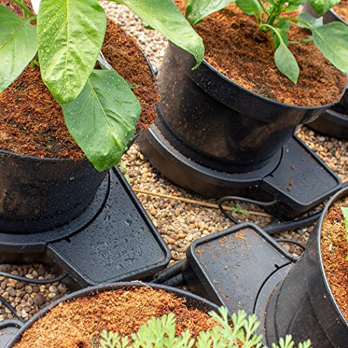 ❥ PLANT IT 01-075-100 GoGro Essential 4 Kit-15L Pots Watering System, Noir Hydroponic System 2