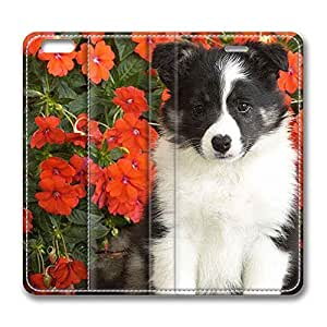 Brain114 5s, iPhone 5s Case, iPhone 5s Case, Shetland Sheepdog Puppy PU Leather Flip Protective Skin Case for Apple iPhone 5s