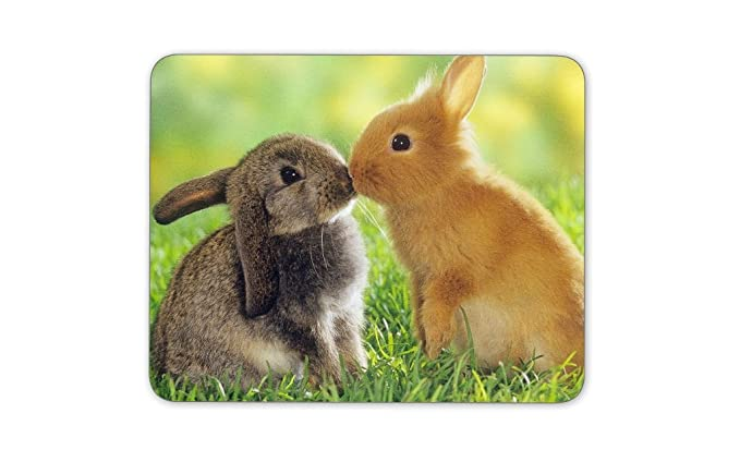 DIGICLAN Rabbit in Love Printed Mousepad