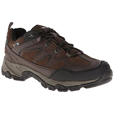 Altitude Trek Low I WP Men's Hiking Boot Dark Chocolate Medium 12