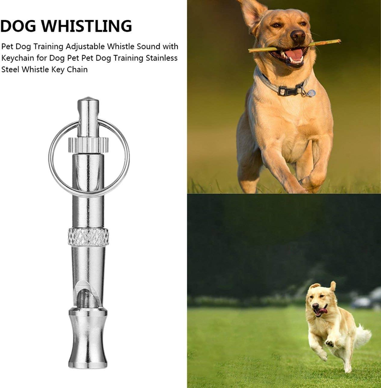 Ballylelly Haustier Hundetraining Einstellbare Pfeife Sound mit Schl/üsselbund f/ür Hund Haustier Hundetraining Edelstahl Pfeife Schl/üsselanh/änger