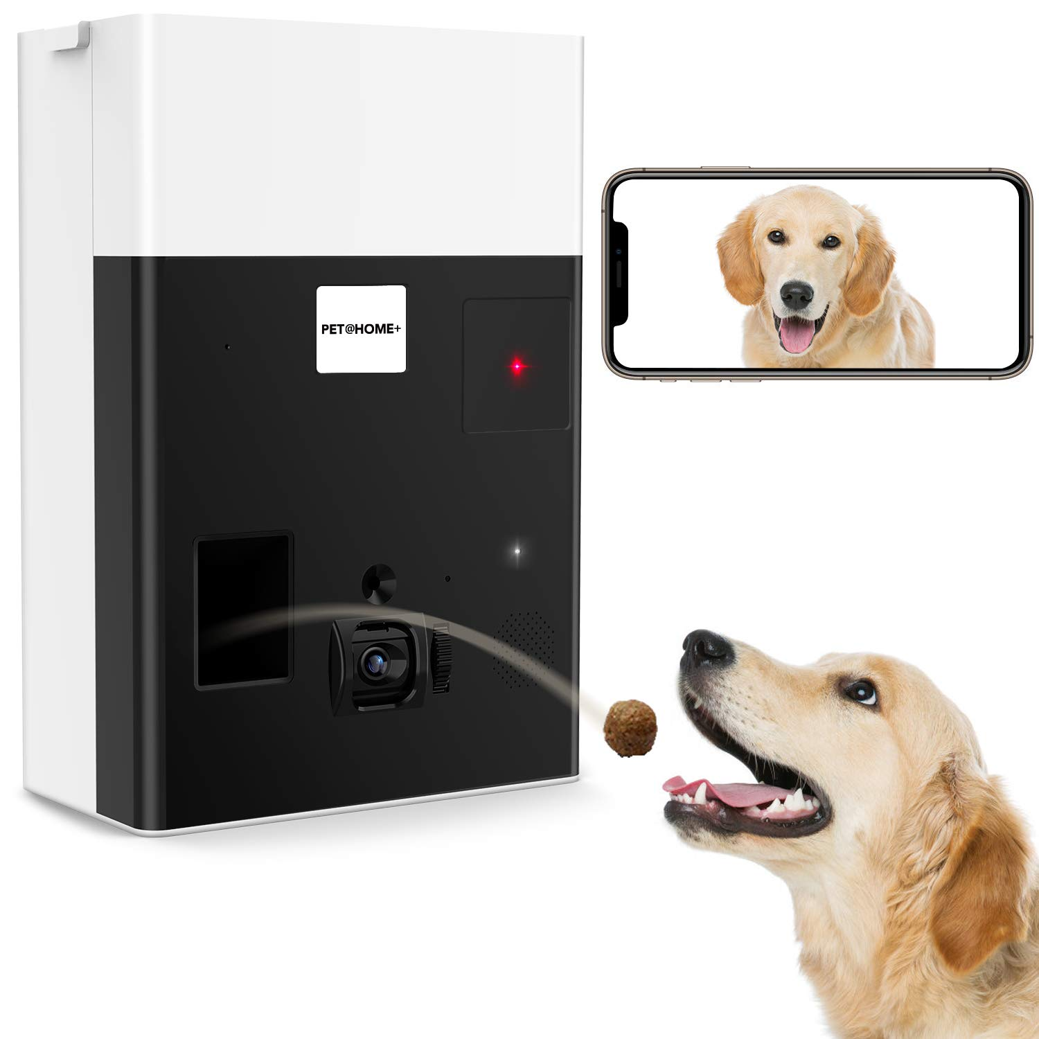 iPATROL Interactive Laser Toy & Dog Camera, Alexa Enabled Treat Dispenser with Thermometer & Cloud Recording, Through The APP (New-Second Generation) Customer Support: cs@ipatrol.net or 855.533.3999